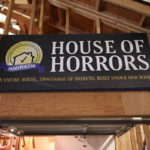 Home Inspection House of Horrors